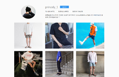 프린슬리-패션
